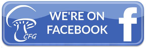 cfg-facebooka