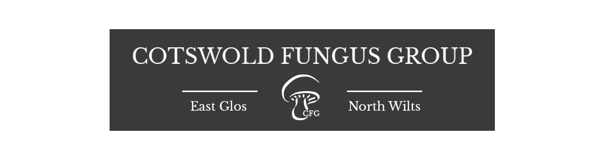 Cotswold Fungus Group